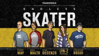 Screenshot der iPhone-App: Transworld Endless Skater aus dem iTunes App Store (iOS).